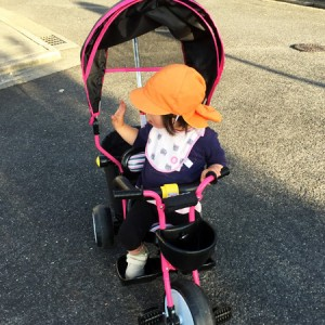 ダウン症児の成長日記 三輪車で散歩