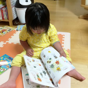 ダウン症児の成長日記 アンパンマン大図鑑