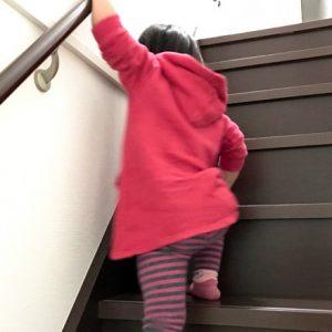 ダウン症児の成長日記 階段