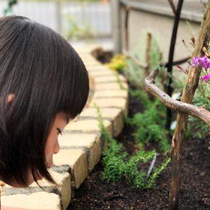 ダウン症児の成長日記 ガーデニング