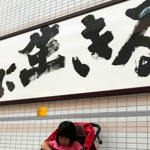 ダウン症児の成長日記 金澤翔子さんの書と