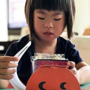 ダウン症児の成長日記 とびひ