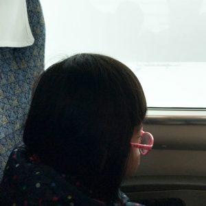 ダウン症児の成長日記 電車