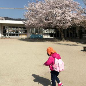 ダウン症児の成長日記 園庭の桜