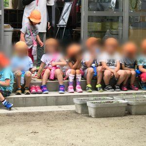 ダウン症児の成長日記 保育所行事