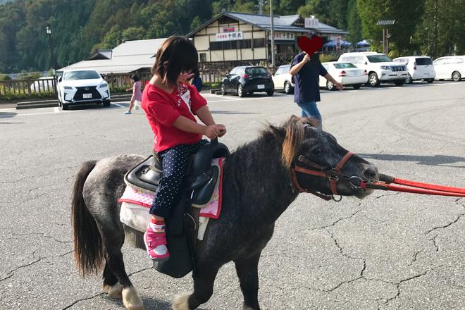 ダウン症児の成長日記 乗馬体験