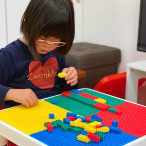 ダウン症児の成長日記 ブロック遊び