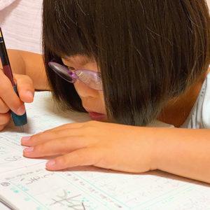 ダウン症児の成長日記 書写用鉛筆で宿題